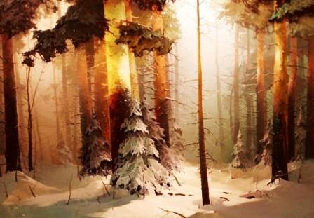 zerkov asd.jpg